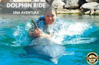 Nado con delfines Dolphin Ride