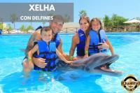 Nado con delfines Dolphinclusive Premium + Xelha