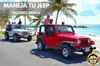 Cozumel en Jeep